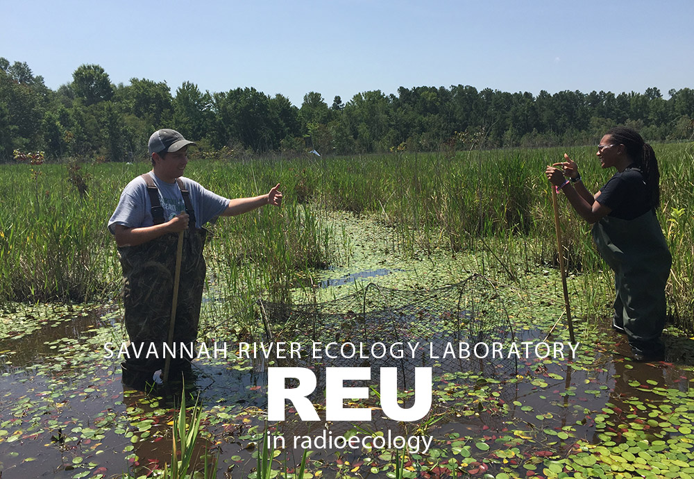 Savannah River Ecology Laboratory REU in Radioecology - two students who have just set up their hoop net in a reference wetland