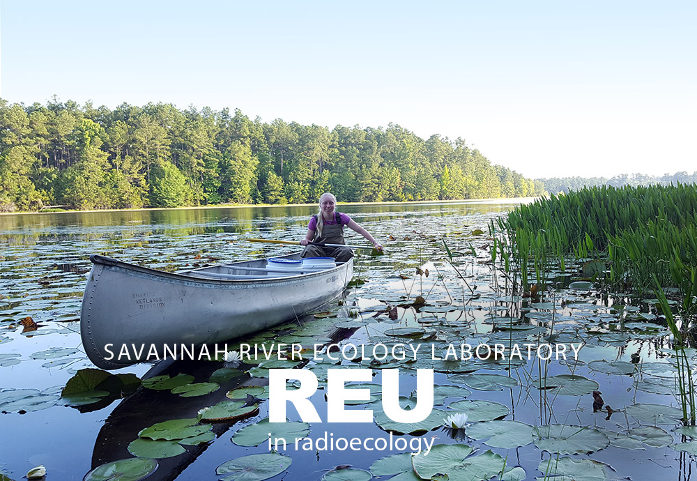 Savannah River Ecology Laboratory REU in Radioecology - Student sampling by canoe on a former reactor cooling reservoir